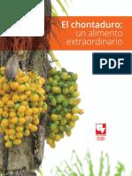 Cartilla harina y recetas chontaduro (2)