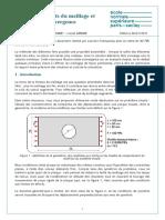 8293-raffinements-du-maillage-et-convergence-ensps (2).docx