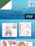 Funciones de las vías respiratorias, reflejo tusígeno