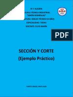 3 Asignación Sección  y Corte de Figura