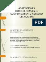 ADAPTACIONES FILOGENETICAS EN EL COMPORTAMIENTO AGRESIVO DEL HOMBRE.pptx