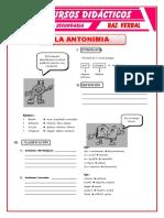 Antonimia y clasificación V