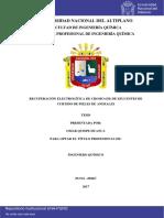 2017 - Recuperación electrolítica del Cromo III