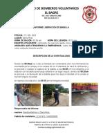 INFORME CAPTURA Y LIVERACION  DE VAVILLA