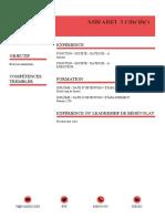CV MI.docx