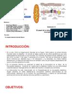 Informe neuropatia diabetica.pptx