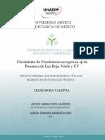 PT2_2091-1_AL12520157.pdf