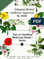 traditional herbal medicine.pptx
