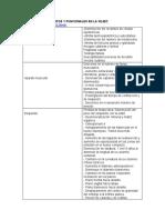 138942830-Cambios-Morfologicos-y-Funcionales-en-La-Vejez.docx