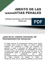 REGLAMENTO DE LAS GARANTIAS PENALES BRENDA