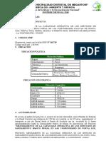 INF. MENSUAL NOVIEMBRE PSBR.docx