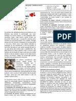 3 SERIE QUIMICA 01.pdf