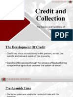 1 The Nature and Functions of Credit..pptx