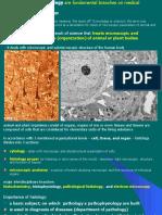 02 histological slide preparation ed for pt-1.ppt