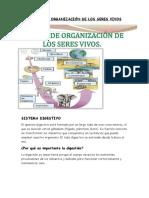 LOS NIVELES DE ORGANIZACION DE LOS SERES VIVOS.docx