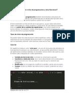 Que son los ciclos de programación y cómo funcionan.docx