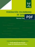 Normas_Fundamentales_FNG