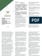 TRPTICO DELITOS INFORMATICOS (2).docx