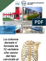 DOTT.-BUZZI-ANATOMIA-MUSCOLOSCHELETRICA_DORSALE