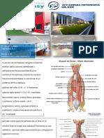 DOTT.-BUZZI-ANATOMIA-MUSCOLOSCHELETRICA_MUSCOLI-RACHIDE.pdf