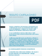 PROF.SSA-DECATALDO-ISTOLOGIA-3