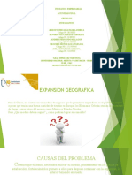 Alternativa_de_Solucion_Ganso final.pptx