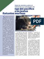 Efecto de la densidad de siembra sobre el crecimiento y rendimiento en subadultos de huachinango del Pacífico, cultivados en jaulas flotantes marinas
