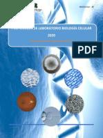 PROTOCOLOS DE LABORATORIO VIRTUAL CONTINGENCIA COVID-19- PLANTILLA Laboratorio 7.docx