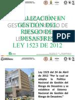 IBGR_PRESENTACION_CAPACITACION_LEY_1523-12_OPAD_2016 (1) (1)