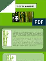 EXPOSICION DETALLES (2).pptx