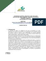 Informe laboratorio FQ
