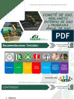PPT - Comité de SSO, RISST y PASSO
