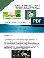 ALIMENTACION_CON_PLANTON_Y_FITO_ALGAS_A_BASE_LOMBRICOL.pdf