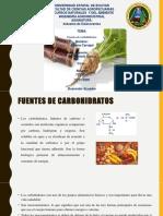 7. Fuentes de carbohidratos.PPT