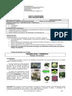 2 LAAP-AN°12_2°_Biología_Guía%20n°2