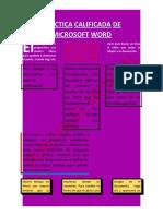Práctica Nº 07 texto Columnas.docx