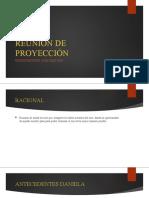 REUNION DE PROYECCIÓN JULIO 2020