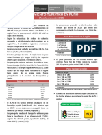 RTR_Puno (1).pdf