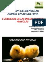 PROD.AVES PPT 1