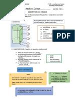 ELEMENTOS Y CARACTERISTICAS DEL PRISMA I-editado.pdf