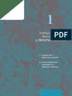 INSTITUCIONALIDAD DEMOCRATICA Y DERECHOS HUMANOS
