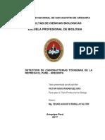 BIrourvh.pdf