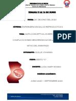 Mapas Conceptuales sobre Complicaciones de la Primera mitad del Embarazo.pdf