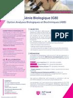 fiche-DUT-GB-2019