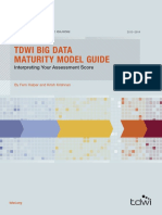 TDWI_BigDataMaturityGuide_20132014_Web.pdf
