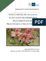 Post cosecha de Alstroemeria evaluacion de diferentes tratamientos ... Bonaudi, Ana V.