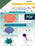 s14-sec-2-infografia-conociendo-sobre-los-virus-dia-3