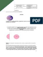 Guía N°1_Volumen y Área de la Esfera