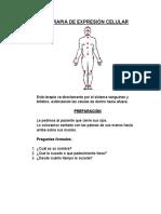TERAPIA DE EXPRESIÓN CELULAR.docx
