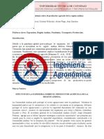 Ensayo Efectos de la pandemia sobre el productor agricola de la region andina